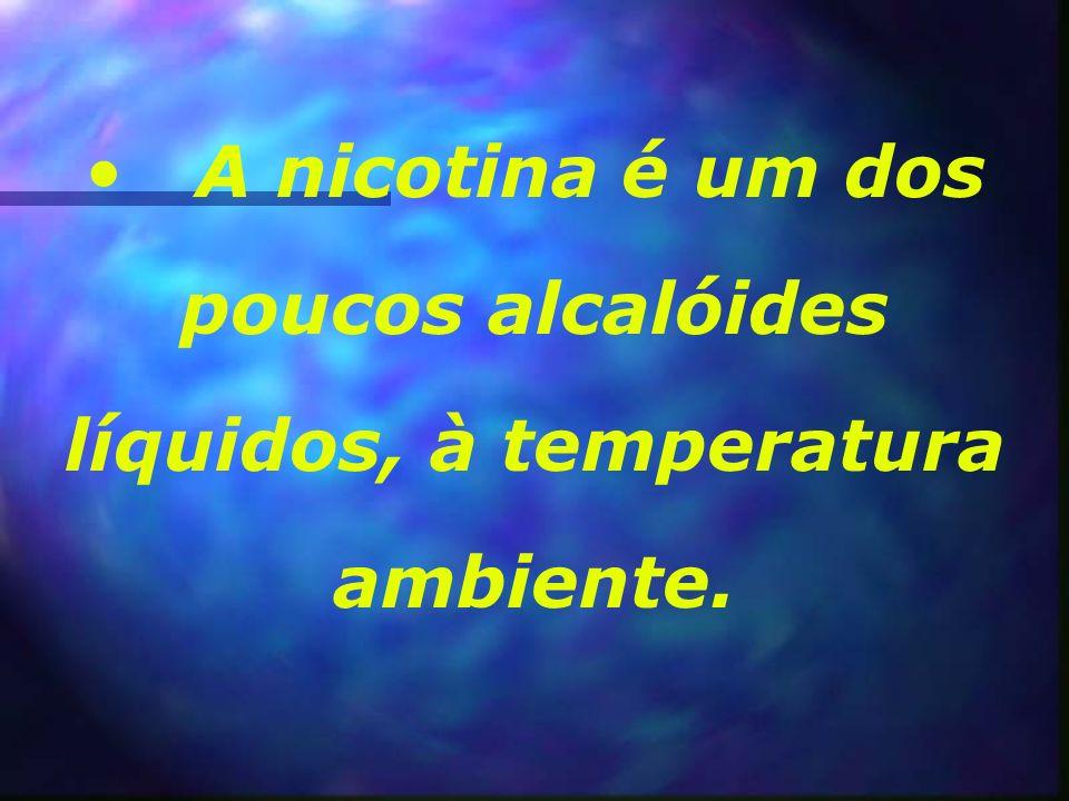 A nicotina é um dos poucos alcalóides líquidos, à temperatura ambiente.