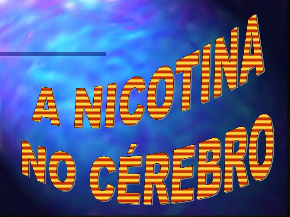 A NICOTINA NO CÉREBRO