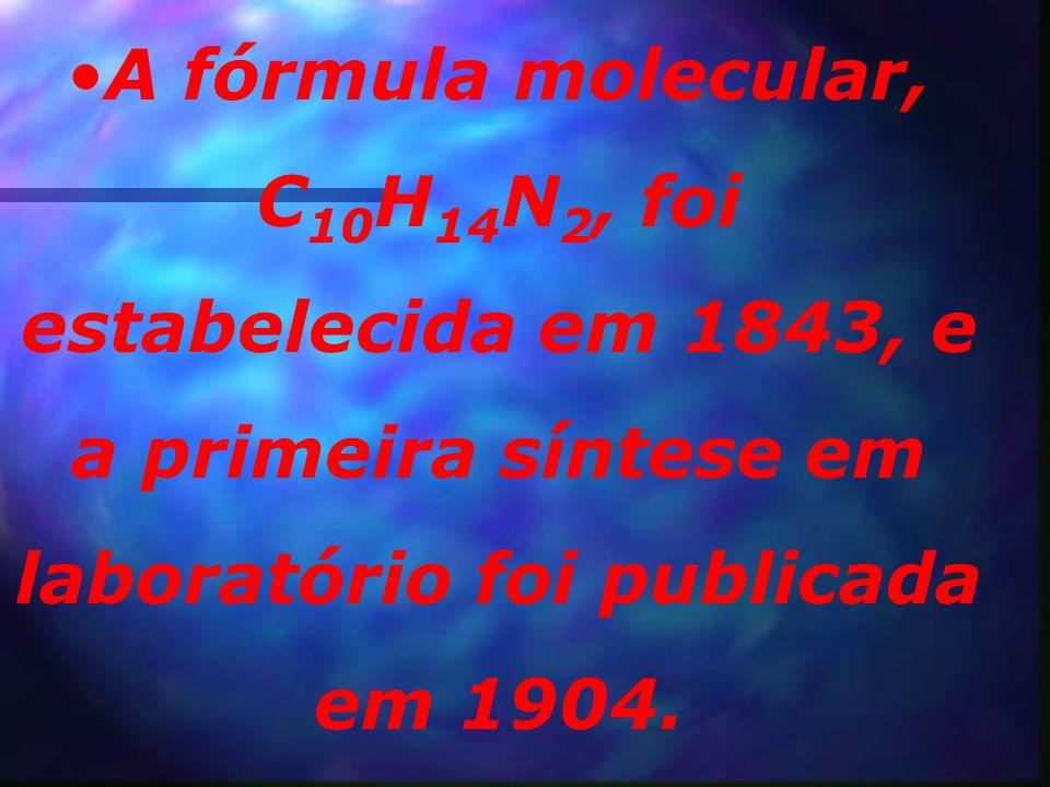 A fórmula molecular, C10H14N2, foi estabelecida em 1843, e a primeira síntese em laboratório foi publicada em 1904.