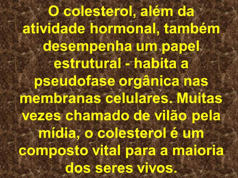 O colesterol, além da atividade hormonal, também desempenha um papel estrutural - habita a pseudofase orgânica nas membranas celulares.