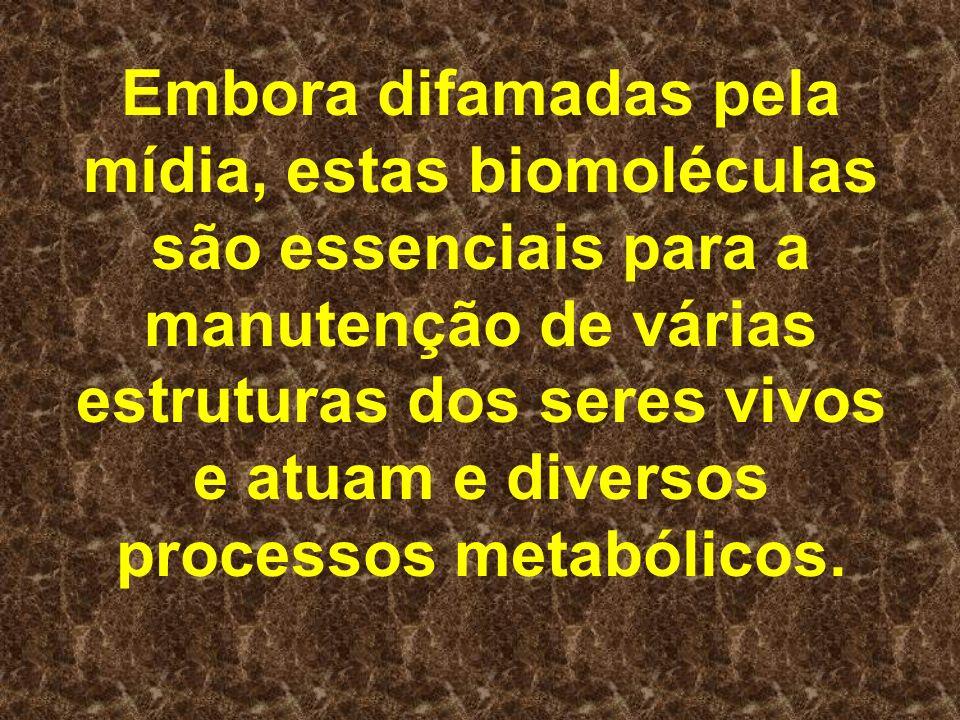 Embora difamadas pela mídia, estas biomoléculas são essenciais para a manutenção de várias estruturas dos seres vivos e atuam e diversos processos metabólicos.