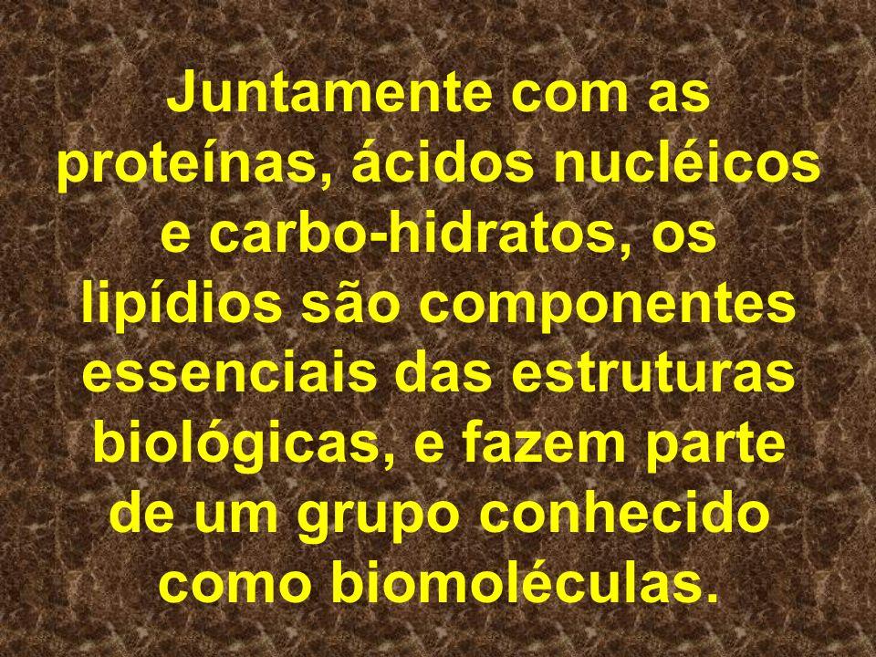 Juntamente com as proteínas, ácidos nucléicos e carbo-hidratos, os lipídios são componentes essenciais das estruturas biológicas, e fazem parte de um grupo conhecido como biomoléculas.