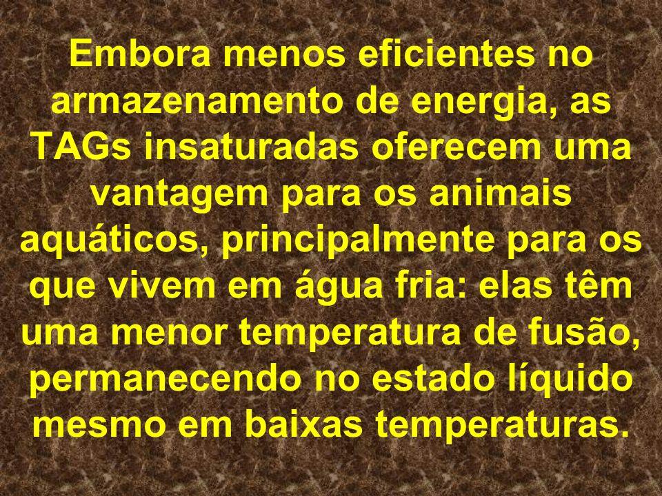 Embora menos eficientes no armazenamento de energia, as TAGs insaturadas oferecem uma vantagem para os animais aquáticos, principalmente para os que vivem em água fria: elas têm uma menor temperatura de fusão, permanecendo no estado líquido mesmo em baixas temperaturas.