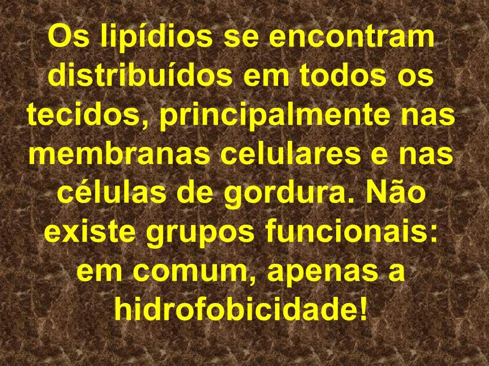 Os lipídios se encontram distribuídos em todos os tecidos, principalmente nas membranas celulares e nas células de gordura.