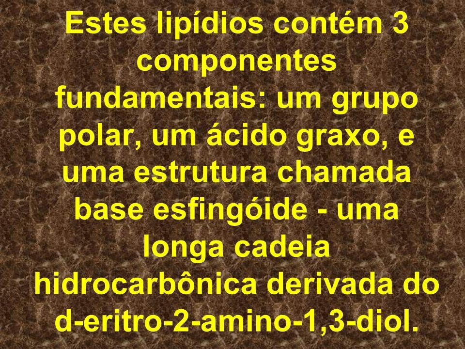 Estes lipídios contém 3 componentes fundamentais: um grupo polar, um ácido graxo, e uma estrutura chamada base esfingóide - uma longa cadeia hidrocarbônica derivada do d-eritro-2-amino-1,3-diol.