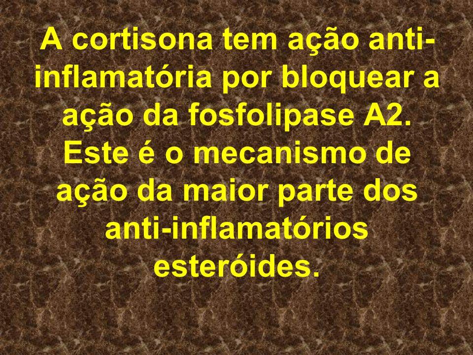 A cortisona tem ação anti-inflamatória por bloquear a ação da fosfolipase A2.