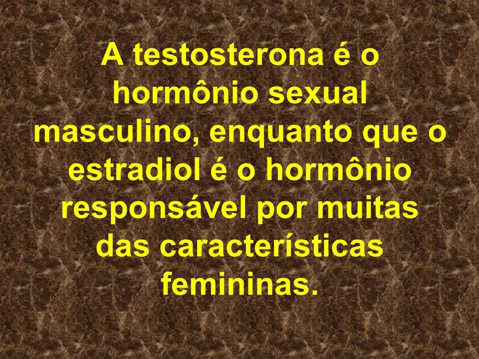 A testosterona é o hormônio sexual masculino, enquanto que o estradiol é o hormônio responsável por muitas das características femininas.
