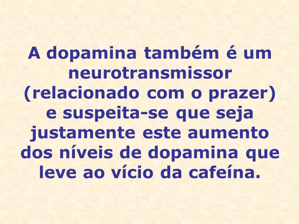 A dopamina também é um neurotransmissor (relacionado com o prazer) e suspeita-se que seja justamente este aumento dos níveis de dopamina que leve ao vício da cafeína.
