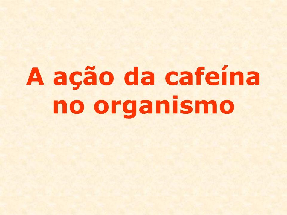 A ação da cafeína no organismo