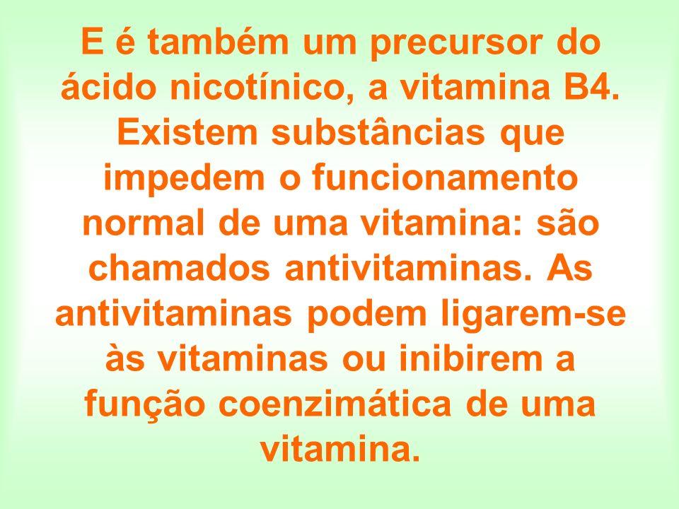E é também um precursor do ácido nicotínico, a vitamina B4