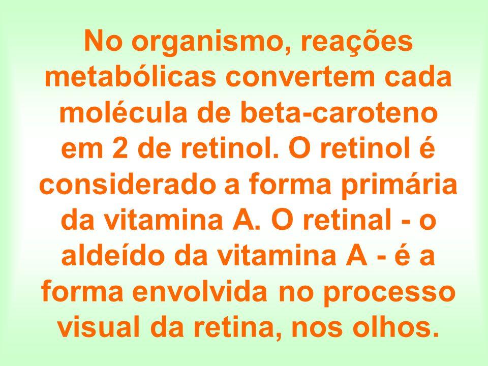 No organismo, reações metabólicas convertem cada molécula de beta-caroteno em 2 de retinol.