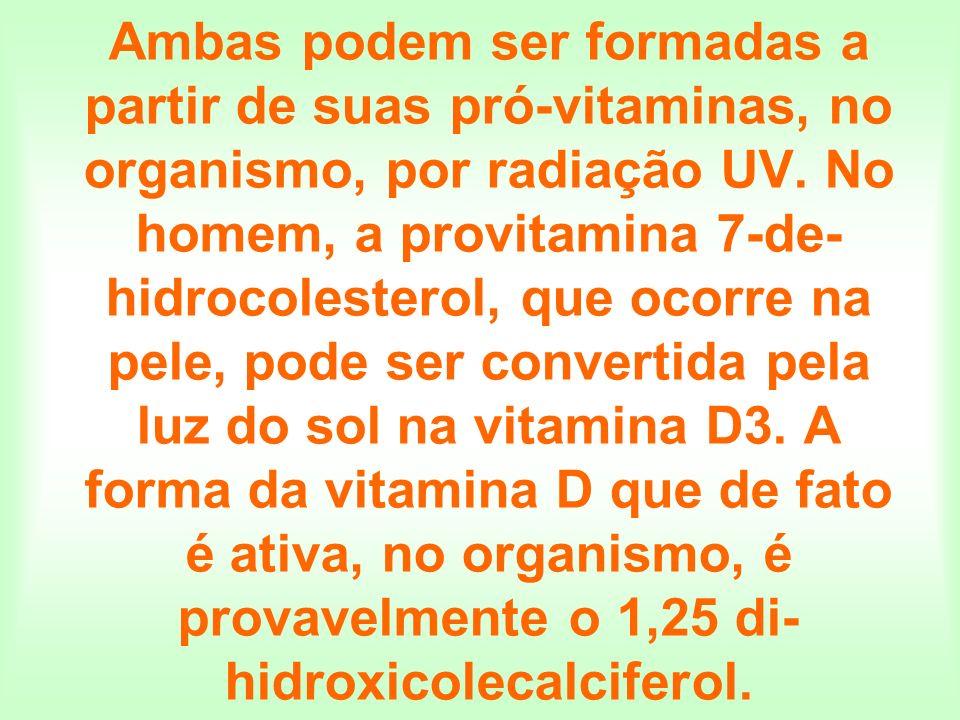 Ambas podem ser formadas a partir de suas pró-vitaminas, no organismo, por radiação UV.