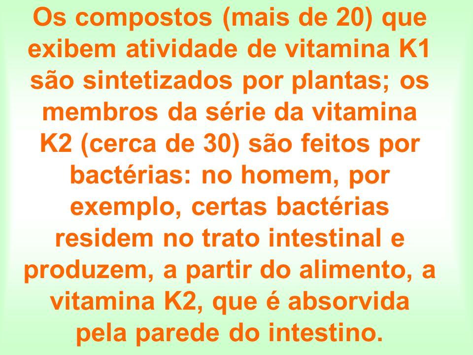 Os compostos (mais de 20) que exibem atividade de vitamina K1 são sintetizados por plantas; os membros da série da vitamina K2 (cerca de 30) são feitos por bactérias: no homem, por exemplo, certas bactérias residem no trato intestinal e produzem, a partir do alimento, a vitamina K2, que é absorvida pela parede do intestino.