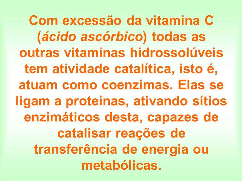 Com excessão da vitamina C (ácido ascórbico) todas as outras vitaminas hidrossolúveis tem atividade catalítica, isto é, atuam como coenzimas.
