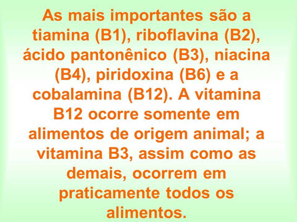 As mais importantes são a tiamina (B1), riboflavina (B2), ácido pantonênico (B3), niacina (B4), piridoxina (B6) e a cobalamina (B12).
