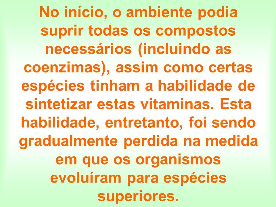 No início, o ambiente podia suprir todas os compostos necessários (incluindo as coenzimas), assim como certas espécies tinham a habilidade de sintetizar estas vitaminas.