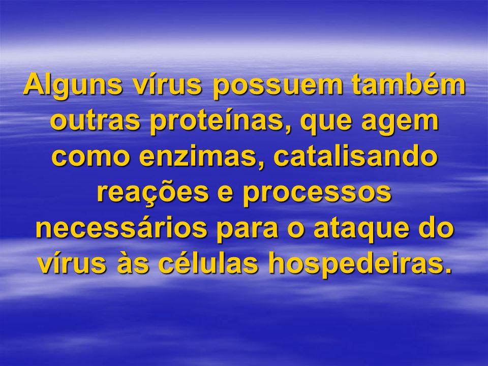 Alguns vírus possuem também outras proteínas, que agem como enzimas, catalisando reações e processos necessários para o ataque do vírus às células hospedeiras.