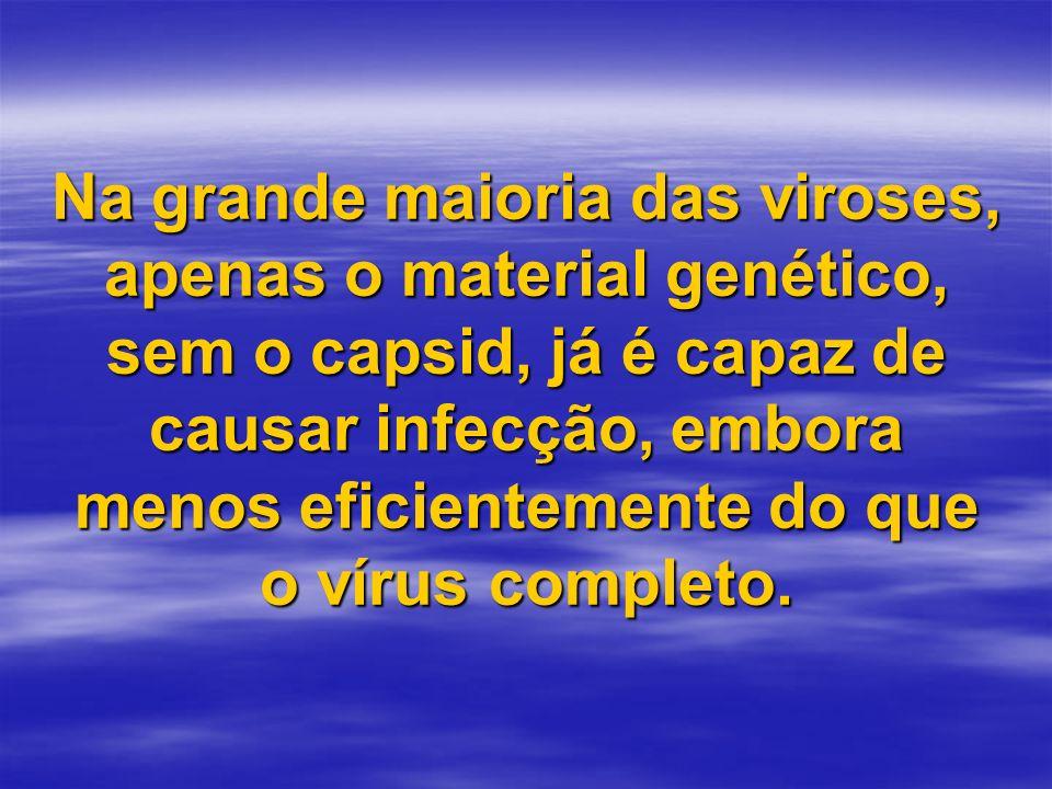 Na grande maioria das viroses, apenas o material genético, sem o capsid, já é capaz de causar infecção, embora menos eficientemente do que o vírus completo.