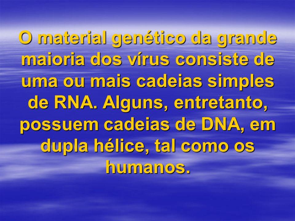 O material genético da grande maioria dos vírus consiste de uma ou mais cadeias simples de RNA.