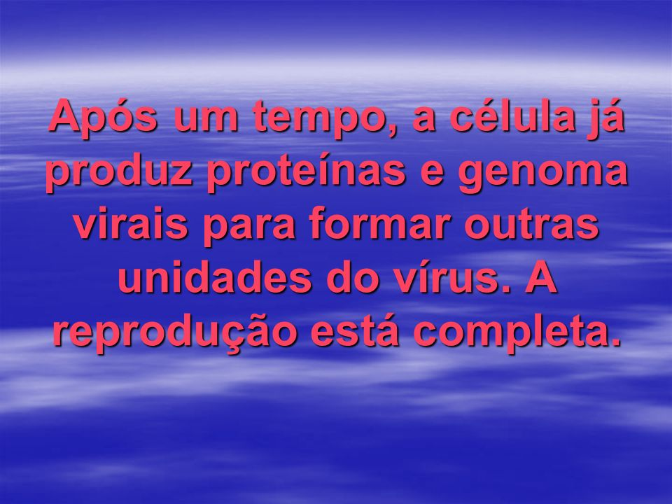 Após um tempo, a célula já produz proteínas e genoma virais para formar outras unidades do vírus.