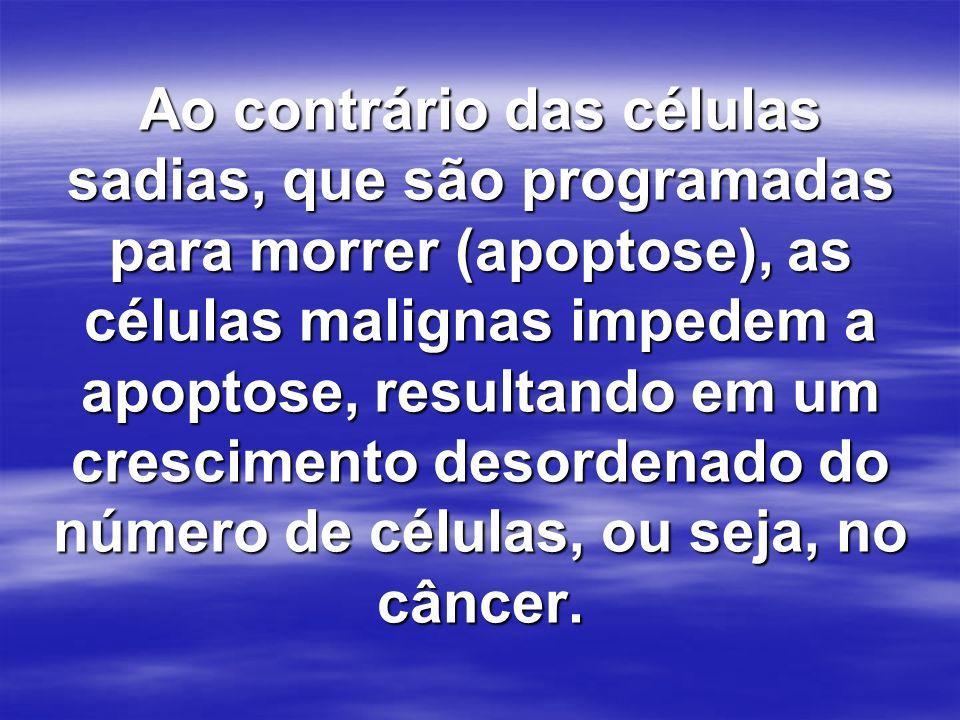 Ao contrário das células sadias, que são programadas para morrer (apoptose), as células malignas impedem a apoptose, resultando em um crescimento desordenado do número de células, ou seja, no câncer.