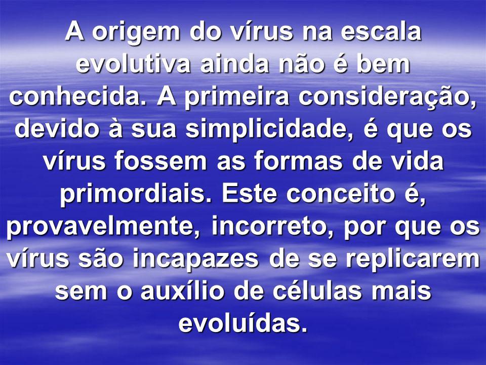 A origem do vírus na escala evolutiva ainda não é bem conhecida