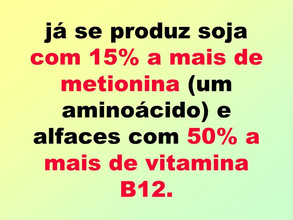 já se produz soja com 15% a mais de metionina (um aminoácido) e alfaces com 50% a mais de vitamina B12.