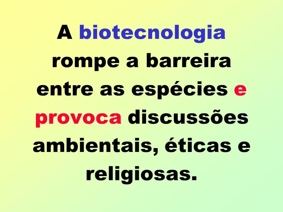 A biotecnologia rompe a barreira entre as espécies e provoca discussões ambientais, éticas e religiosas.