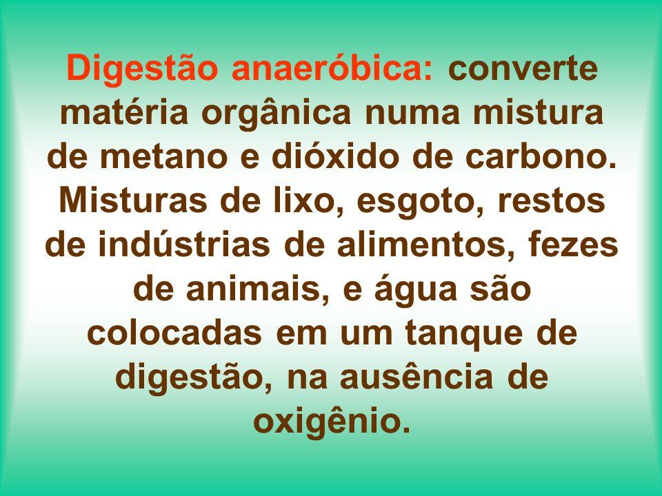 Digestão anaeróbica: converte matéria orgânica numa mistura de metano e dióxido de carbono.