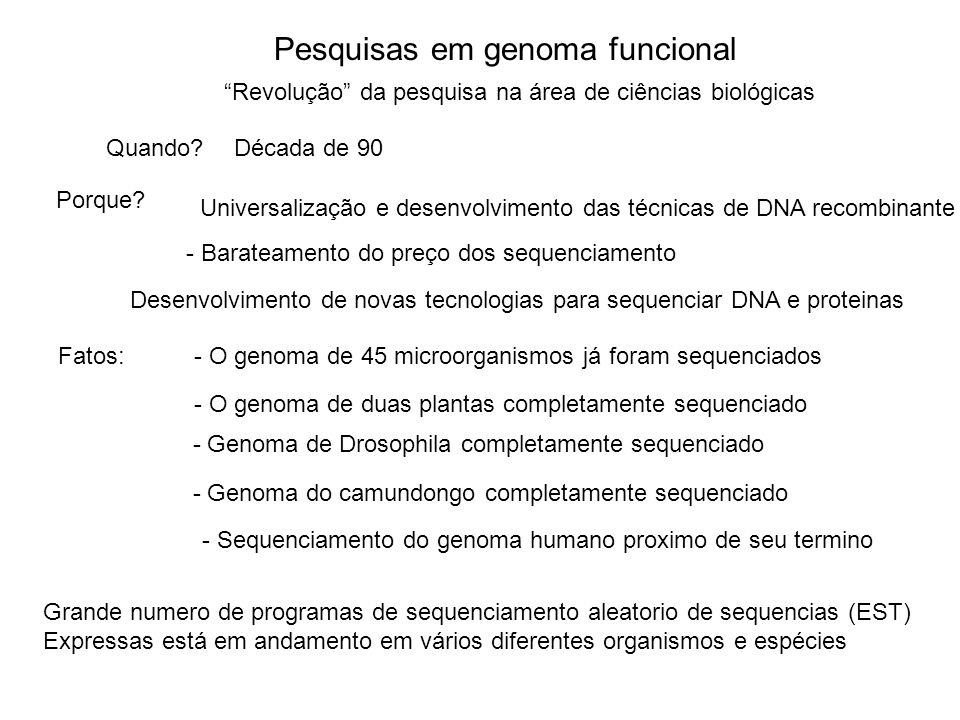 Pesquisas em genoma funcional