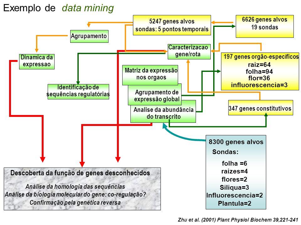 Exemplo de data mining Descoberta da função de genes desconhecidos