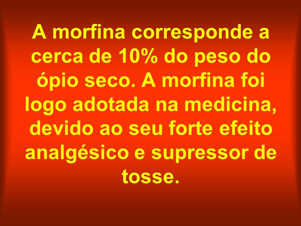 A morfina corresponde a cerca de 10% do peso do ópio seco