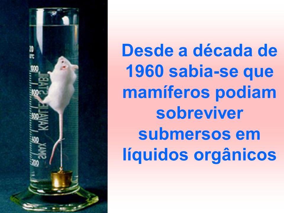 Desde a década de 1960 sabia-se que mamíferos podiam sobreviver submersos em líquidos orgânicos