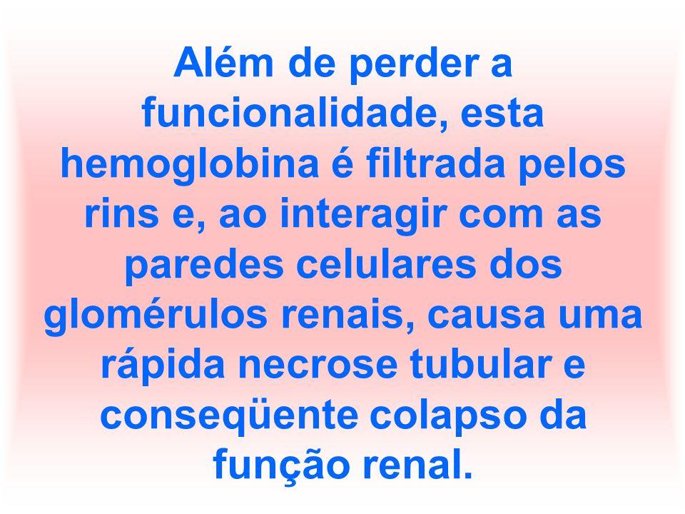 Além de perder a funcionalidade, esta hemoglobina é filtrada pelos rins e, ao interagir com as paredes celulares dos glomérulos renais, causa uma rápida necrose tubular e conseqüente colapso da função renal.