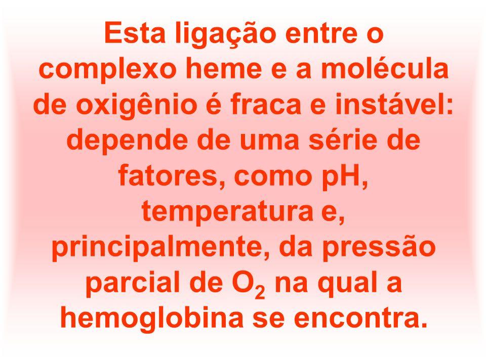 Esta ligação entre o complexo heme e a molécula de oxigênio é fraca e instável: depende de uma série de fatores, como pH, temperatura e, principalmente, da pressão parcial de O2 na qual a hemoglobina se encontra.