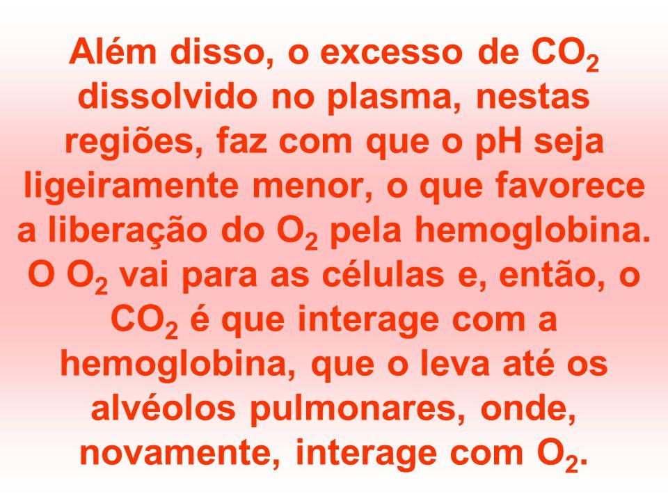 Além disso, o excesso de CO2 dissolvido no plasma, nestas regiões, faz com que o pH seja ligeiramente menor, o que favorece a liberação do O2 pela hemoglobina.