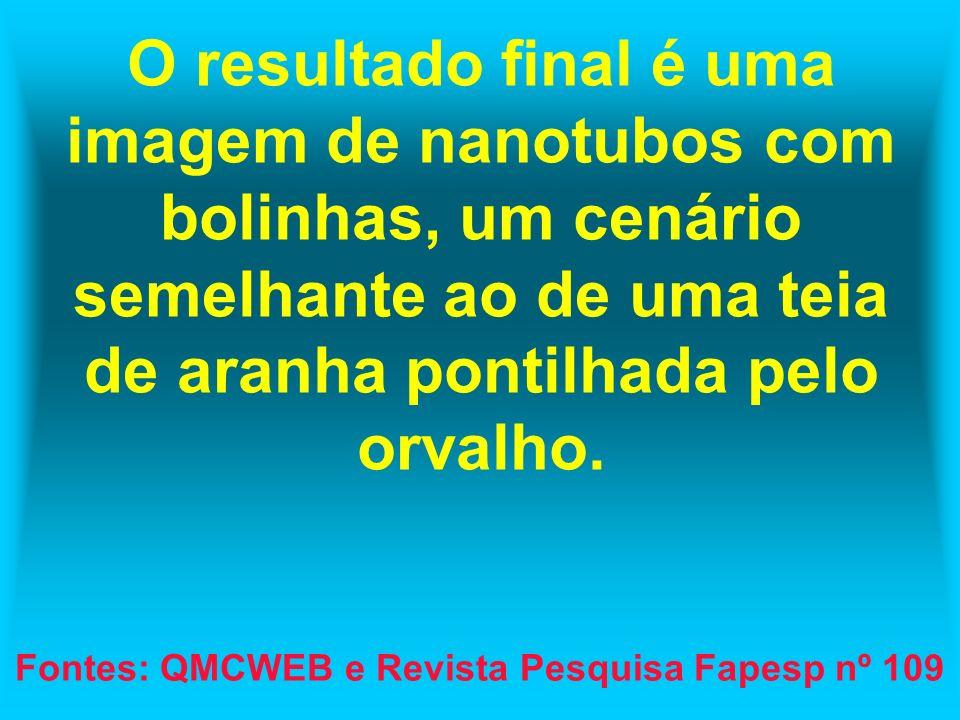 Fontes: QMCWEB e Revista Pesquisa Fapesp nº 109
