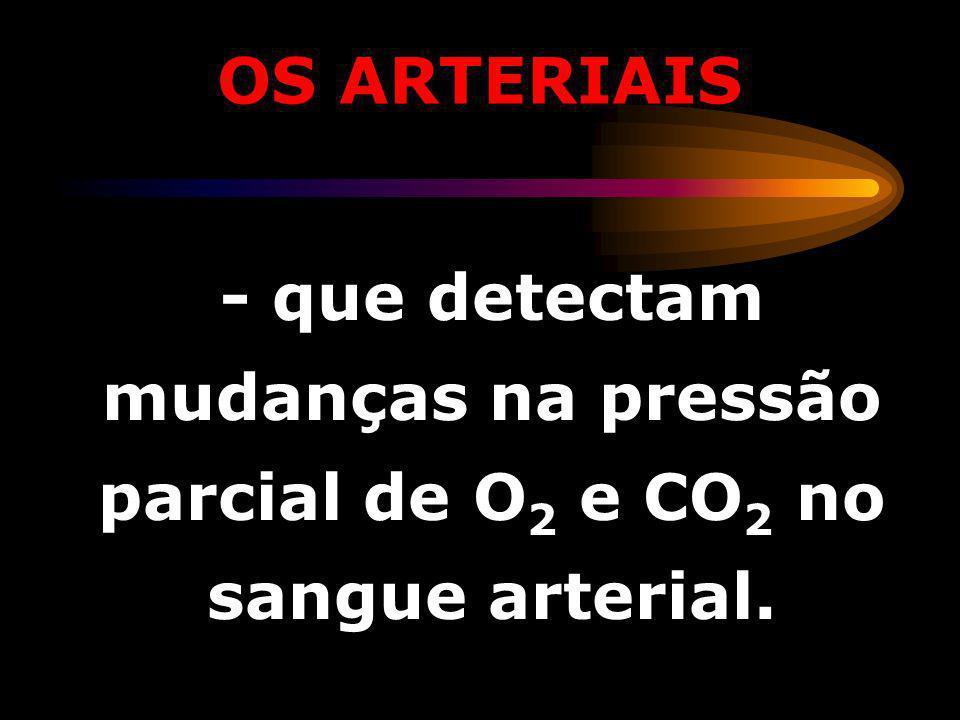 OS ARTERIAIS - que detectam mudanças na pressão parcial de O2 e CO2 no sangue arterial.