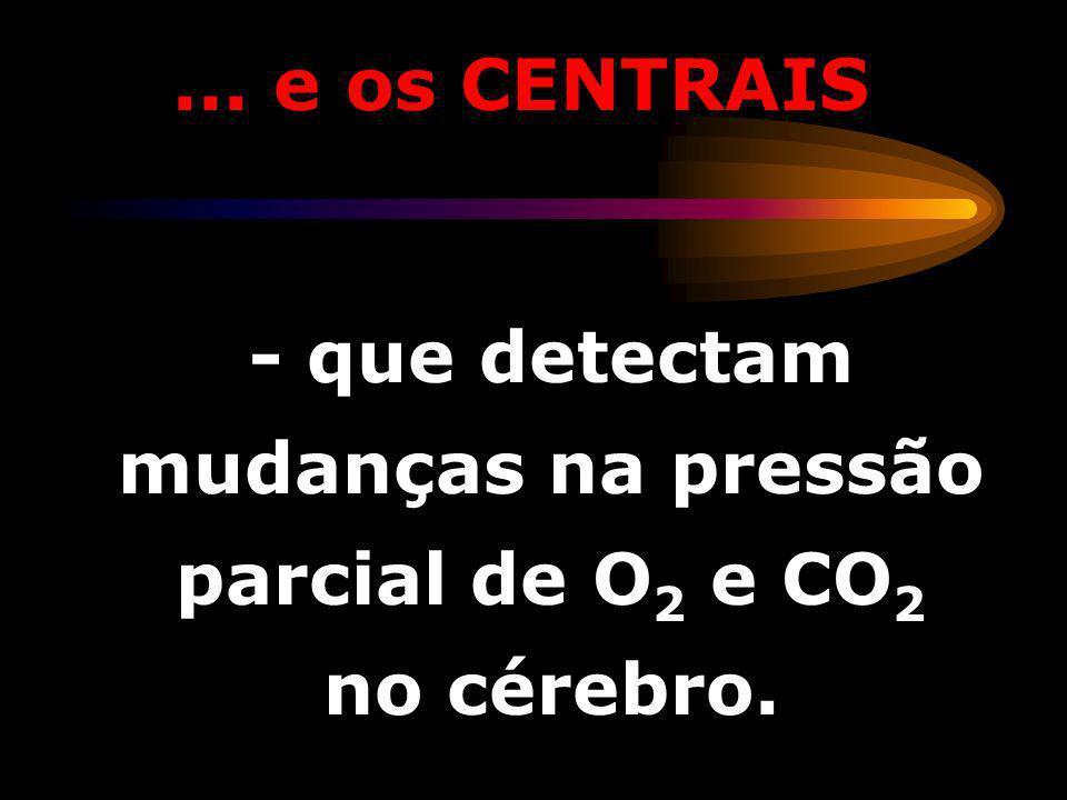 - que detectam mudanças na pressão parcial de O2 e CO2 no cérebro.