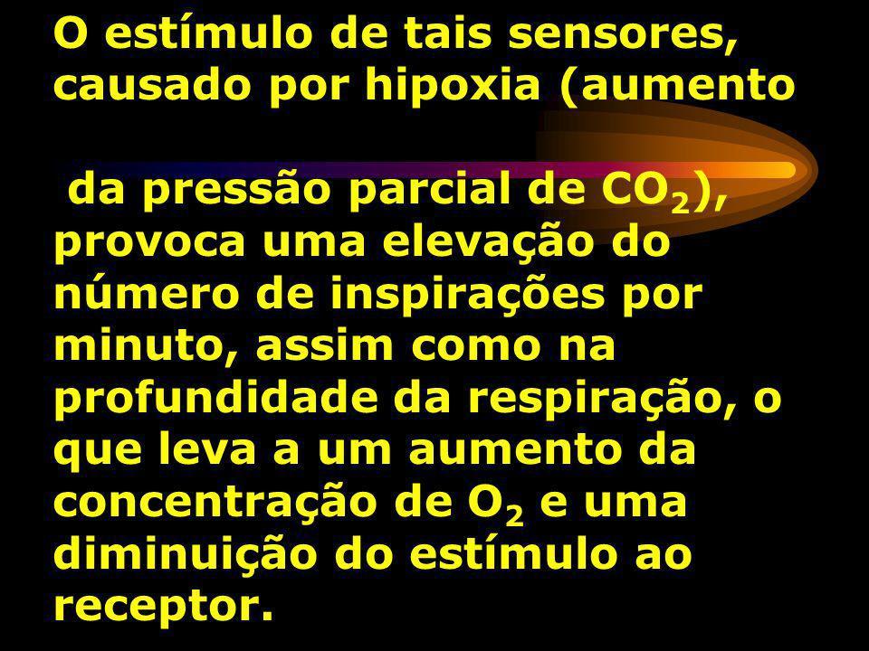 O estímulo de tais sensores, causado por hipoxia (aumento