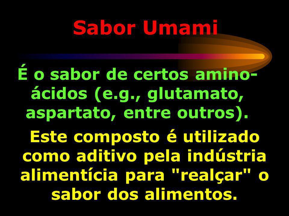 Sabor Umami É o sabor de certos amino-ácidos (e.g., glutamato, aspartato, entre outros).