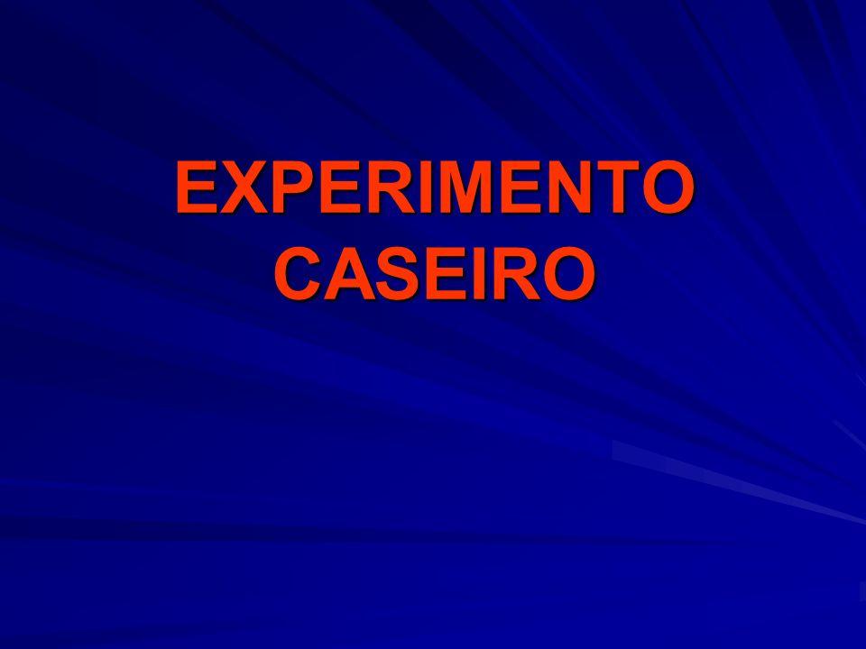 EXPERIMENTO CASEIRO