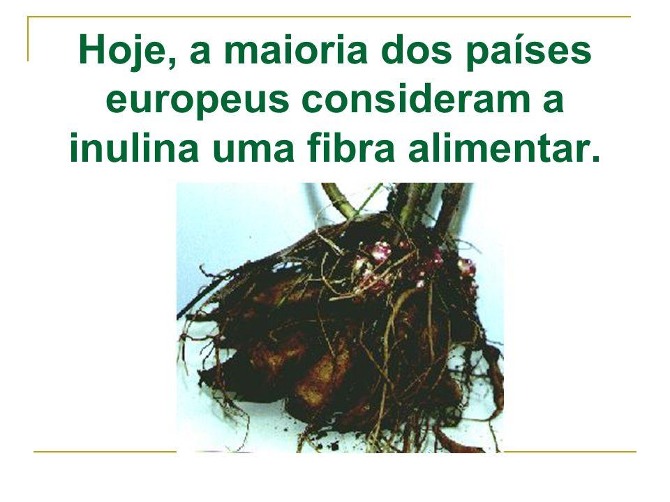 Hoje, a maioria dos países europeus consideram a inulina uma fibra alimentar.