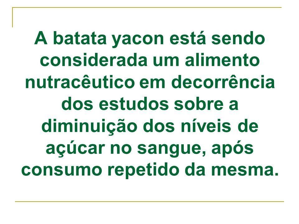 A batata yacon está sendo considerada um alimento nutracêutico em decorrência dos estudos sobre a diminuição dos níveis de açúcar no sangue, após consumo repetido da mesma.