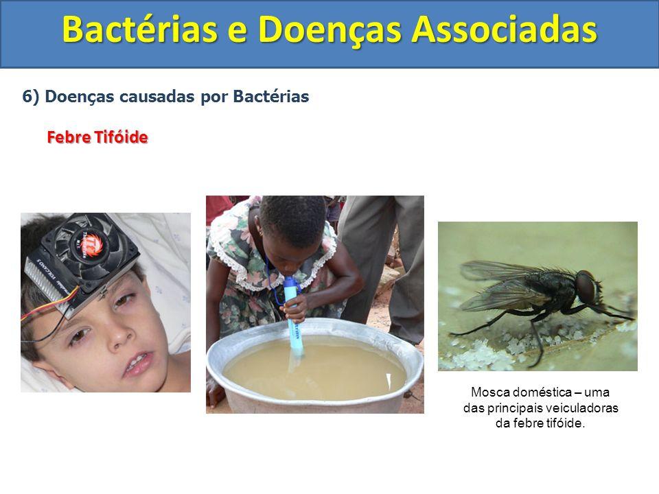 Bactérias e Doenças Associadas