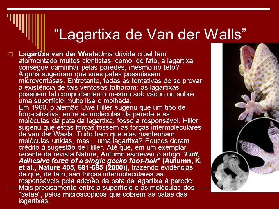 Lagartixa de Van der Walls