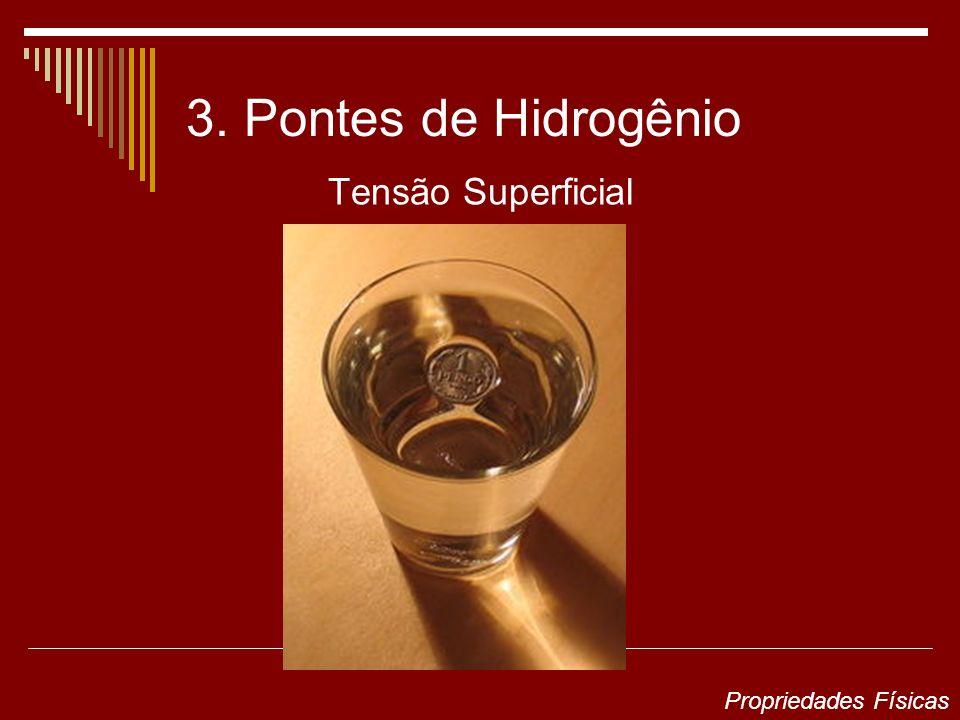 3. Pontes de Hidrogênio Tensão Superficial Propriedades Físicas