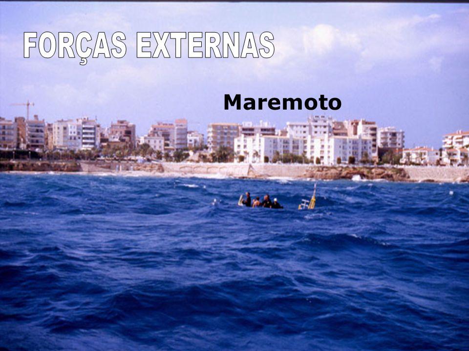 FORÇAS EXTERNAS Maremoto