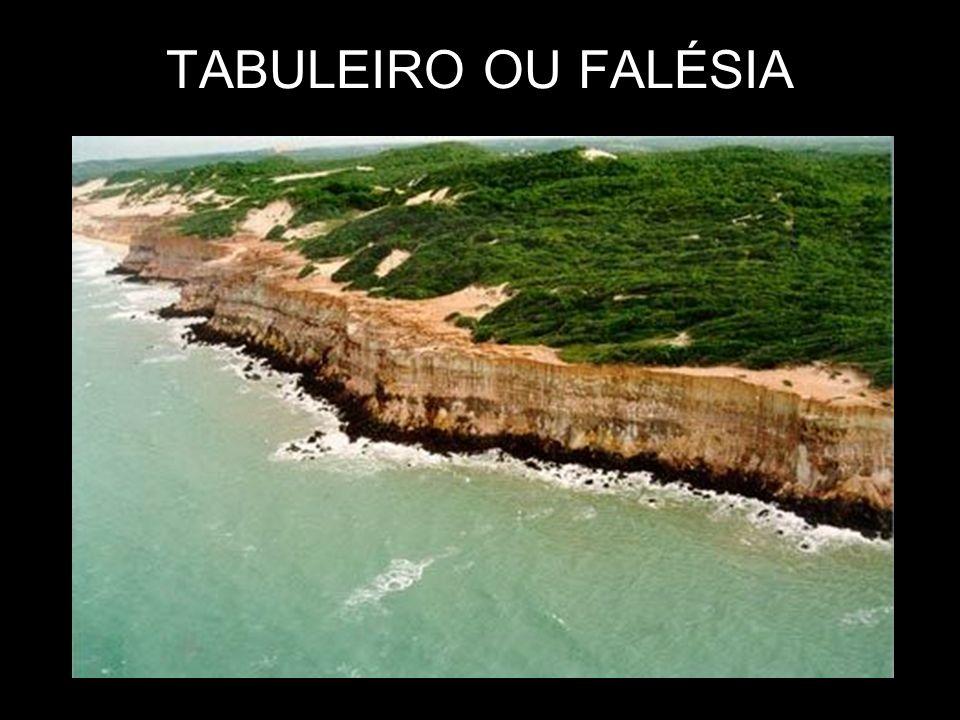 TABULEIRO OU FALÉSIA