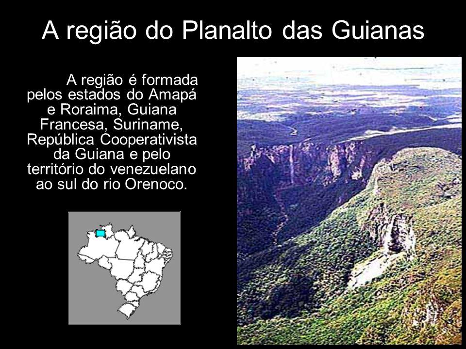 A região do Planalto das Guianas